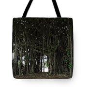 Hawaiian Banyan Tree - Hilo City Tote Bag