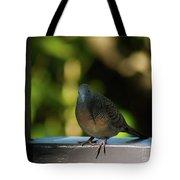 Hawaiian Mourning Dove Tote Bag