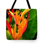 Hawaiian Parakeet Heliconia Tote Bag