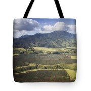 Hawaiian Pineapple Fields Tote Bag