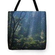 Hawaiian Rainforest Tote Bag