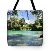 Hawaiian Landscape 4 Tote Bag
