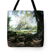 Hawaiian Landscape 3 Tote Bag