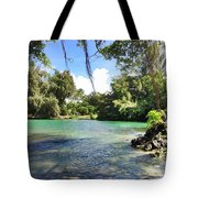 Hawaiian Landscape Tote Bag