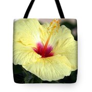 Hawaii's Yellow Hibiscus Tote Bag