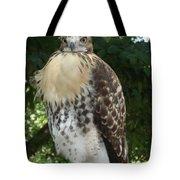 Hawk 2 Tote Bag