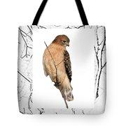 Hawk Framed In Branch Outline Tote Bag