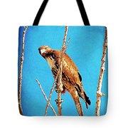 Hawk In A Glow Tote Bag