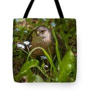 Hawk In The Grass Tote Bag