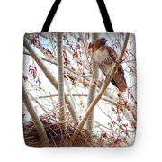 Hawk Nesting IIi Tote Bag