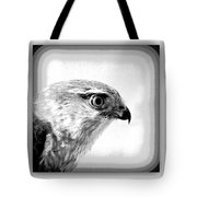 Hawk - Raptor Tote Bag