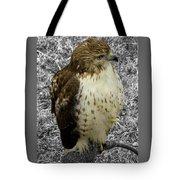 Hawk V3c Tote Bag