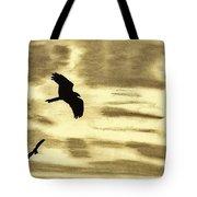 Hawks - At - Sunset Tote Bag