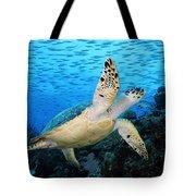 Hawksbill On Eldorado Tote Bag