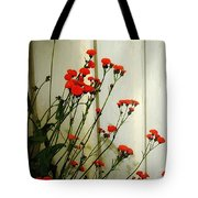 Hawkweed In Late Autumn Sun Tote Bag