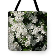 Hawthorn In Bloom Tote Bag