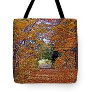 Hawthorn Hollow Tote Bag