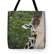Hay Not Just For Horses Tote Bag