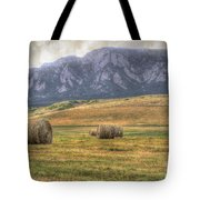 Hay There Tote Bag by Juli Scalzi
