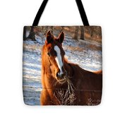 Hay There Tote Bag