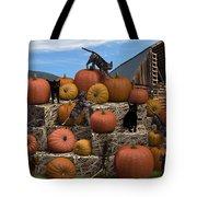 Haycats N' Pumpkins Tote Bag