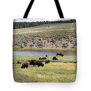 Hayden Valley Bison Herd In Yellowstone National Park Tote Bag