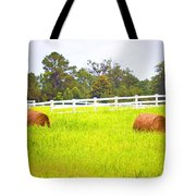 Hayrolls And Fences Tote Bag