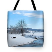 Hays Creek Winter Tote Bag