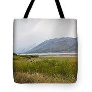 Hazy Day - Grand Teton National Park - Wyoming Tote Bag