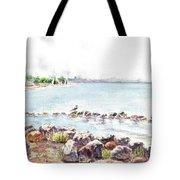 Hazy Morning At Crab Cove In Alameda California Tote Bag