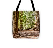hd 379 hdr - Henry Cowell 2 Tote Bag