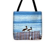 hd 383 hdr - Two Pelicans Tote Bag