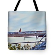 Hdr Bird On A Pipeline II Tote Bag