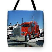 Hdrcatr3080-13 Tote Bag