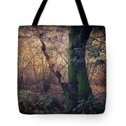 He Filled My Days With Endless Wonder Tote Bag by Laurie Search
