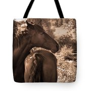 Head And Tail Tote Bag