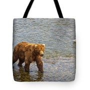 Head Grizzly Bear And Sea Gull In Moraine River In Katmai Np-ak  Tote Bag