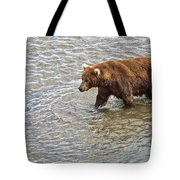 Head Grizzly Bear With Intense Fishing  Focus For Salmon In Moraine River In Katmai Np-ak Tote Bag