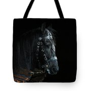 Head Of An Equine Warrior Tote Bag