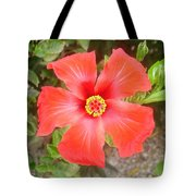 Head On Shot Of A Red Tropical Hibiscus Flower Tote Bag