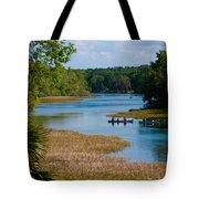 Head Springs Tote Bag