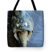 Heads Or Tails Tote Bag