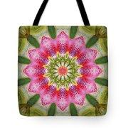 Healing Mandala 25 Tote Bag by Bell And Todd
