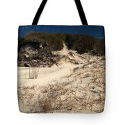 Healthy Dunes Tote Bag by Adam Jewell