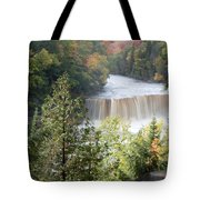 Hear The Roar Tote Bag