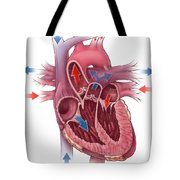 Heart Blood Flow Tote Bag