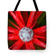 Heart Of Fire Tote Bag