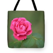 Heart Of My Heart Rose Tote Bag