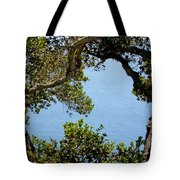 Heart Of Nepenthe - Big Sur Tote Bag