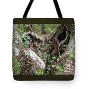 Heart-shaped Tree Tote Bag